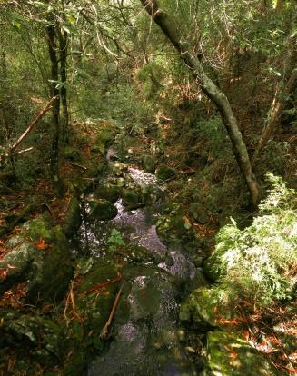 IMAG0241 Panorama