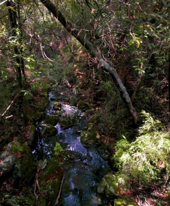 IMAG0259 Panorama