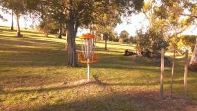 """Strange lamp thing"" a.k.a. disc golf target"