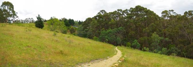 IMGP3328 Panorama