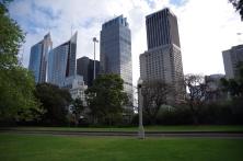 This clash of the Sydney CBD from Botanic Gardens felt so strange, and amazing