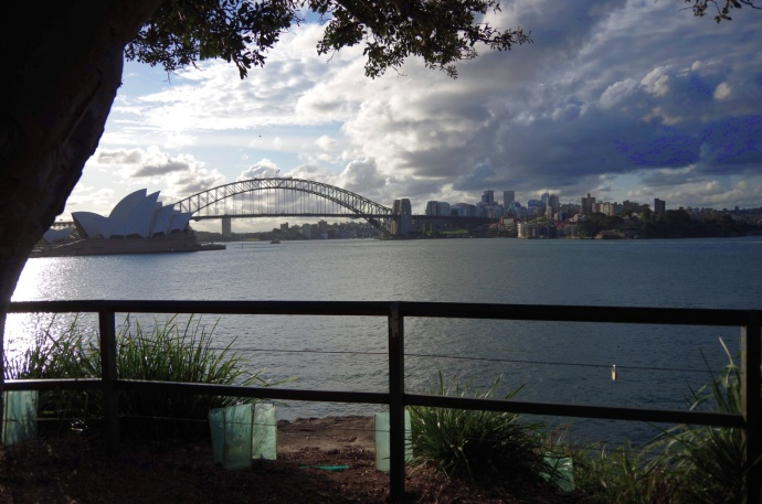 The Sydney Opera House and Harbour Bridge from the Botanic Gardens