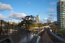 Sydney's Botanic Gardens towards Potts Point