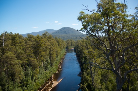 The Huon River from the Airwalk cantilever