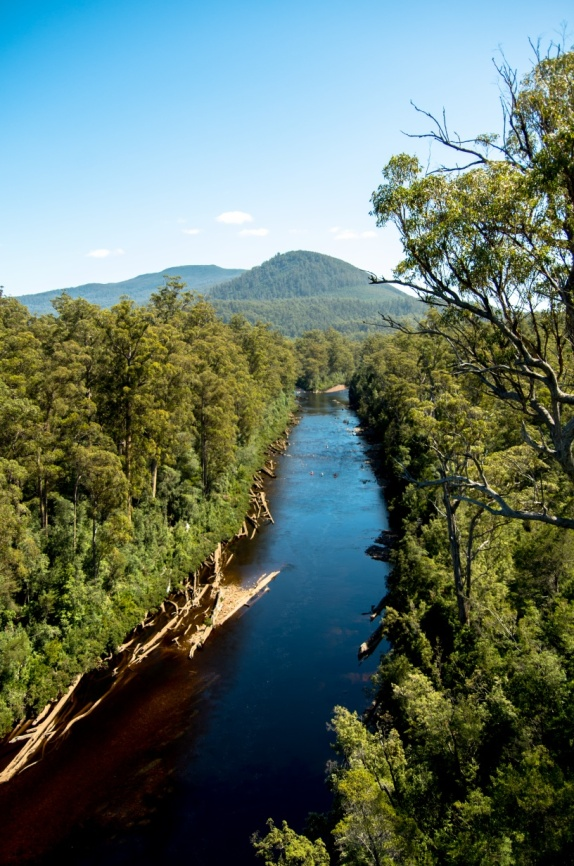 The Huon River from the cantilever
